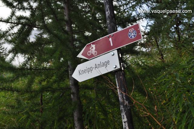 Percorso Kneipp nel bosco a un quarto d'ora di cammino dal centro di Saas Fee
