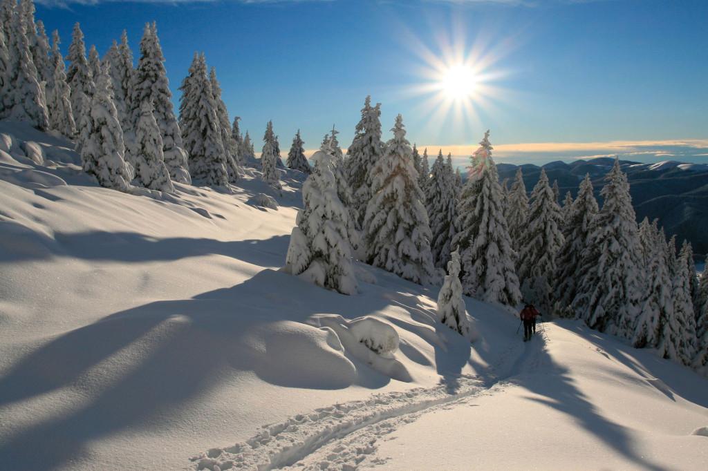 ciaspolata in neve fresca in Trentino