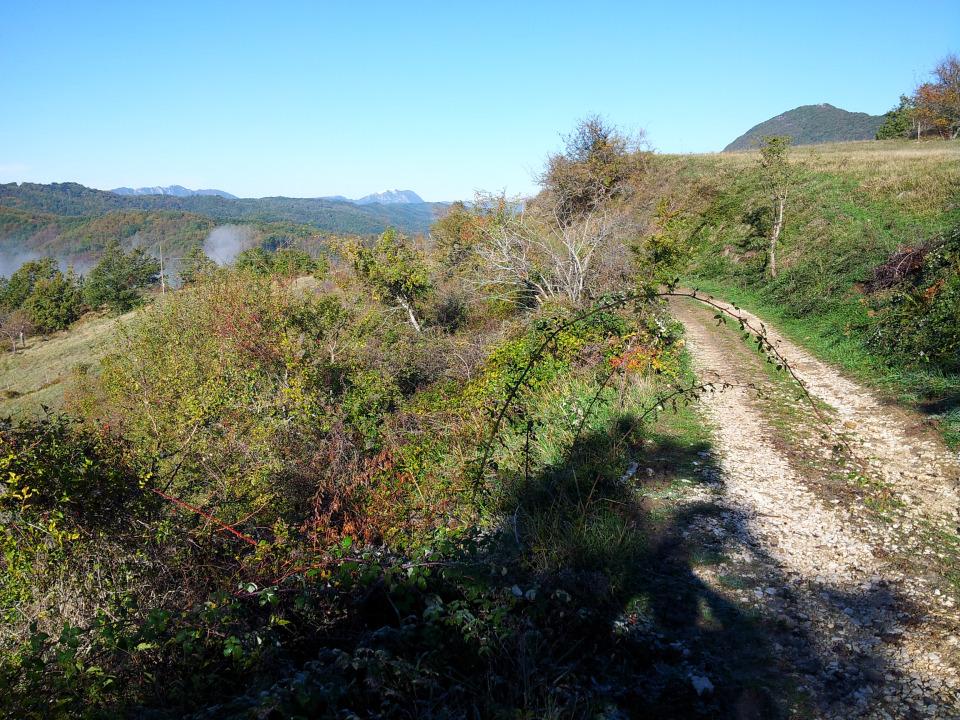 Parte del sentiero in autunno (credits photo camminobriganti.wordpress.com)
