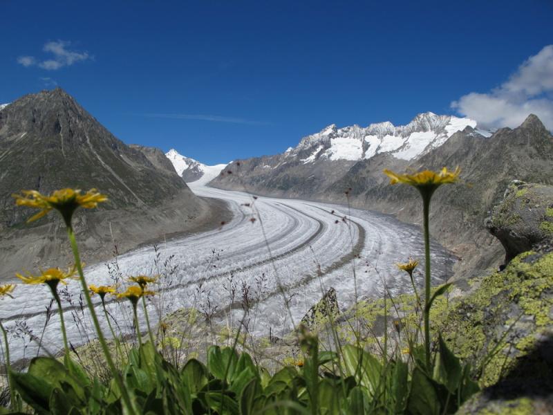 ghiacciaio-dell-aletsch-svizzera-vallese-3b558d47-9ecb-4d96-af8f-39e9b54a9357