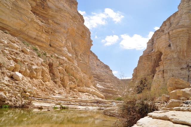 parco nazionale ein avdat canyon