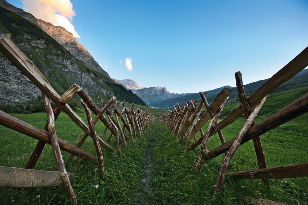 Passeggiare al Parco Beverin, uno dei luoghi di Heidi Copyright by: Switzerland Tourism - BAFU By-Line: swiss-image.ch/Marcus Gyger