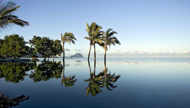 palme mauritius