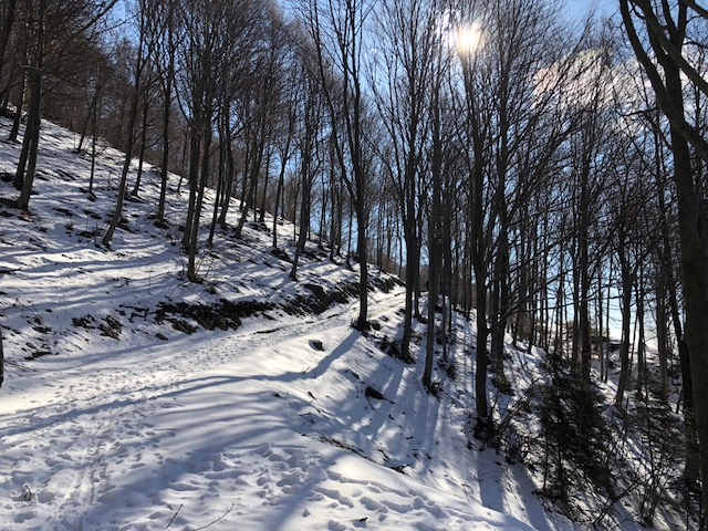 monte crocetta sentiero