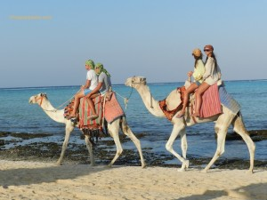 Viaggi in Egitto, Codacons: rimborsi per chi non parte