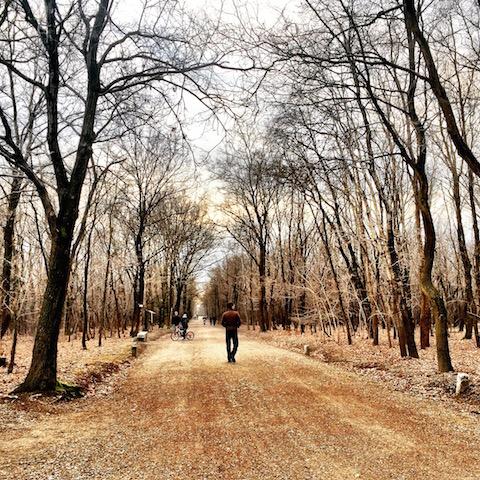 Via Gaggio: un sentiero che racconta storie