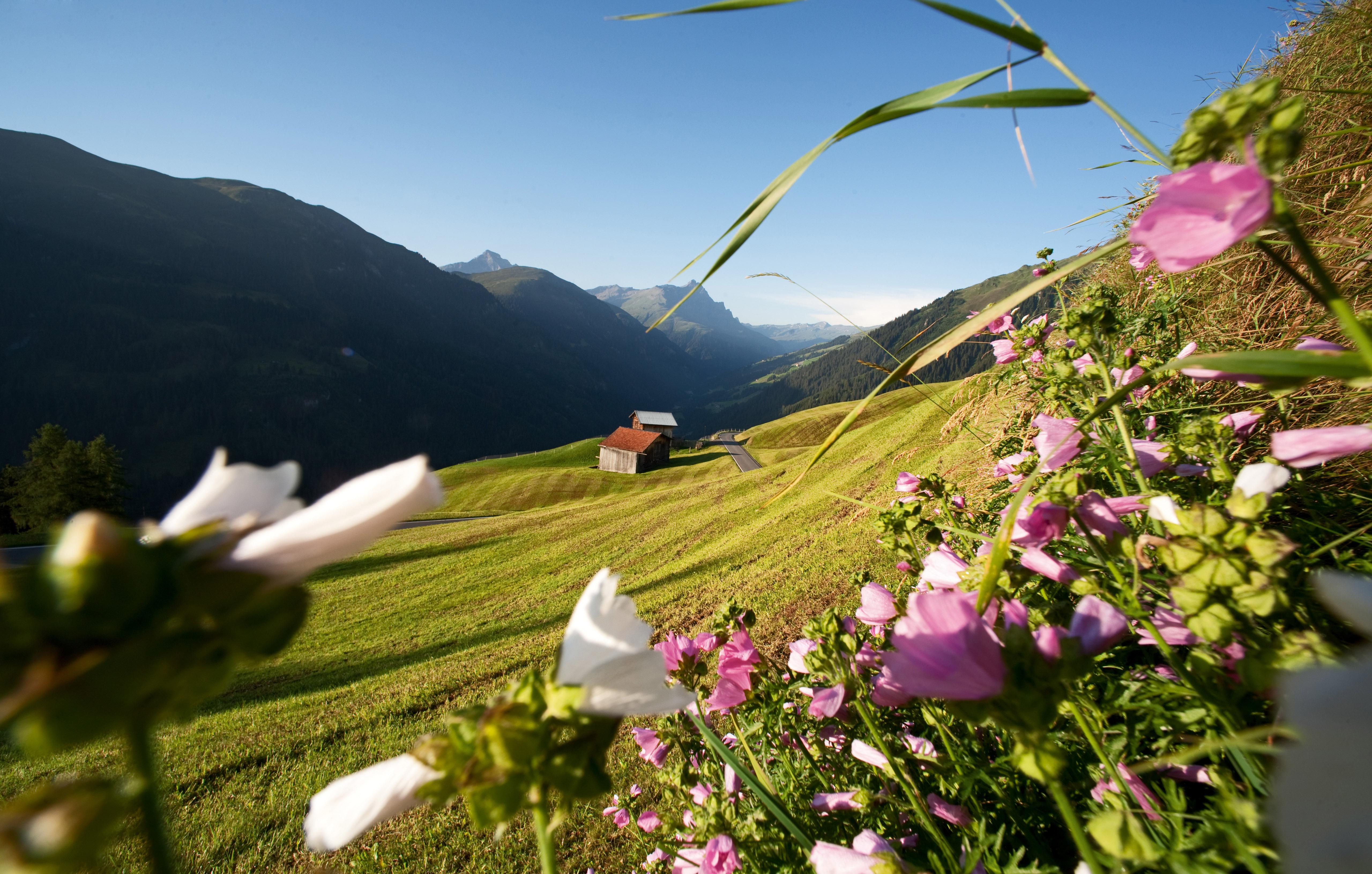 Viaggio in Svizzera sulle tracce di Heidi, per sentirsi come lei