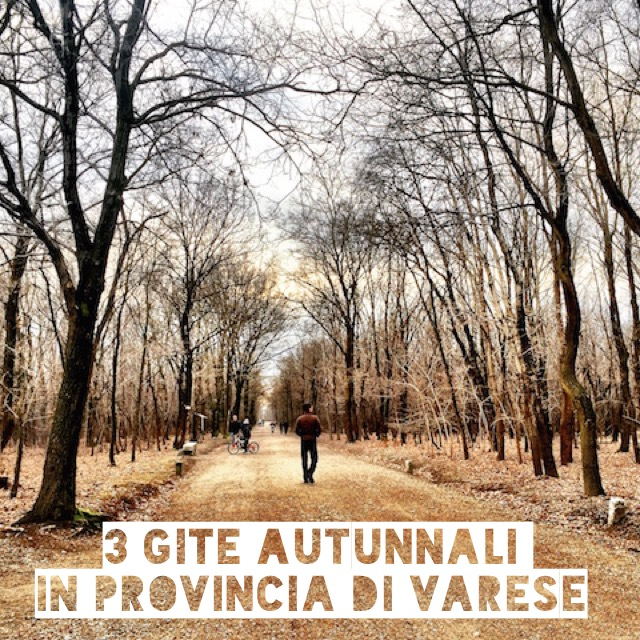 Gite autunnali in provincia di Varese: 3 idee per amanti della natura