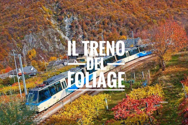 ferrovia centovalli vigezzina