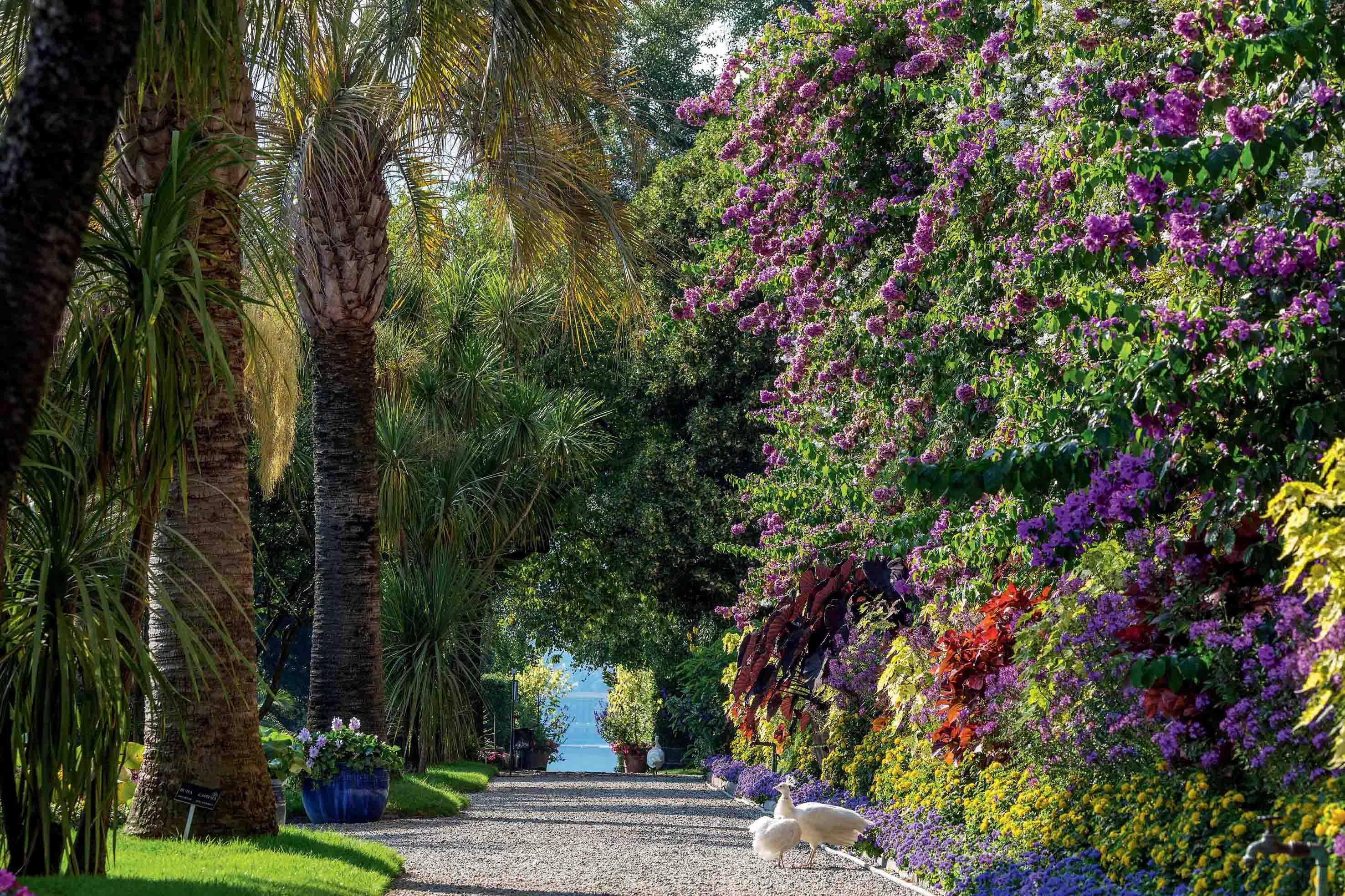 Meno centri commerciali, più gite nel verde: si amplia il network Giardini Italiani sul Lago Maggiore. E riapre il Parco di Villa Pallavicino