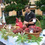 Festa dei frutti dimenticati - foto del CFC CAsola Valsenio
