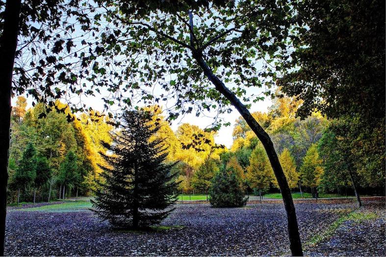 Il Giardino del Principe di Aranjuez