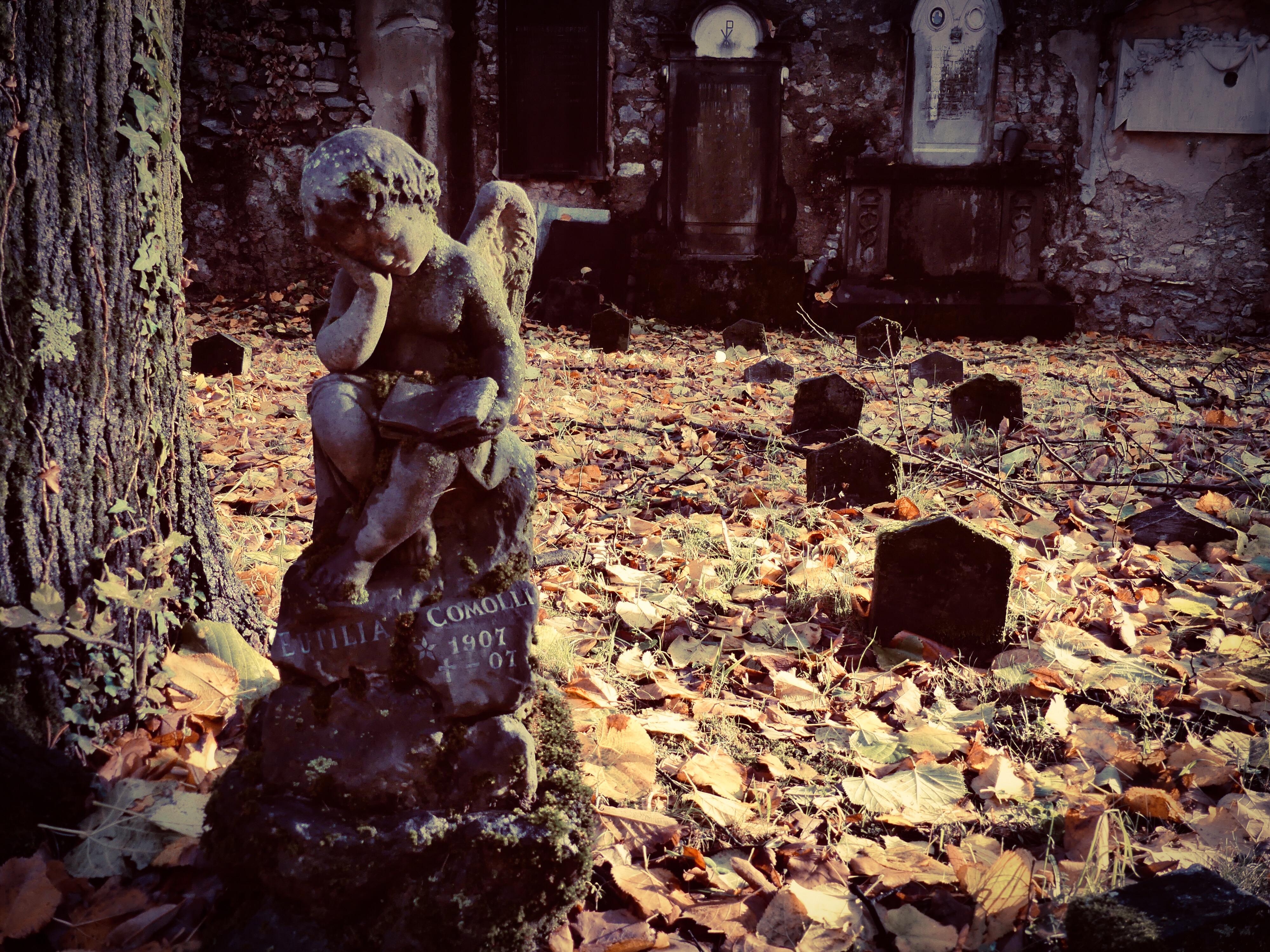 vecchio cimitero Viggiù
