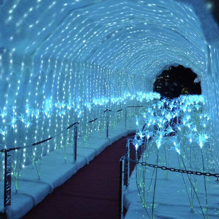 Il tunnel luminoso (di solito c'è anche un orso polare pronto per i selfie!)