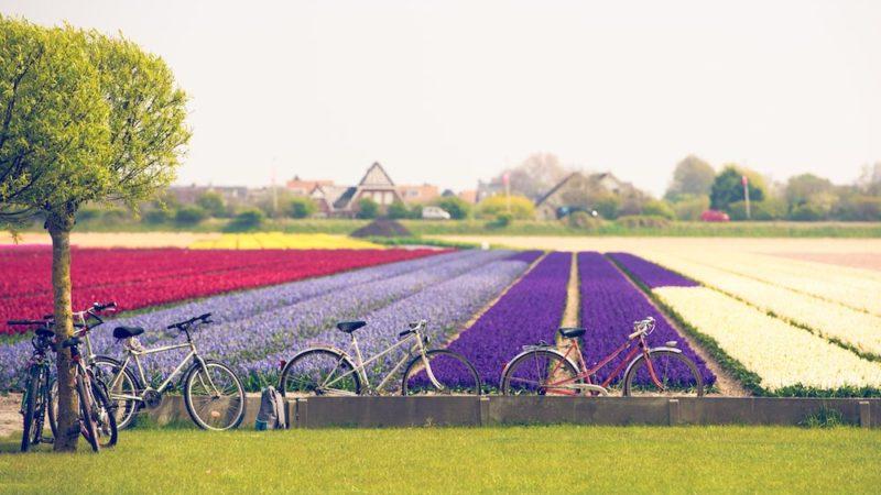Week end di primavera in bici: 5 itinerari da non perdere