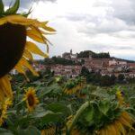 sentieri Monferrato