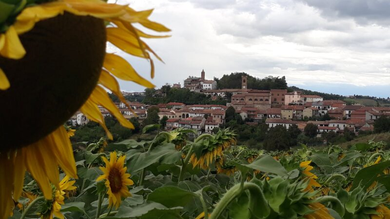 3 sentieri in Monferrato da provare