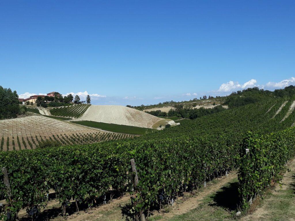 monferrato itinerari