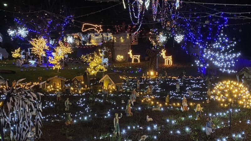 Lucine di Natale Cardana